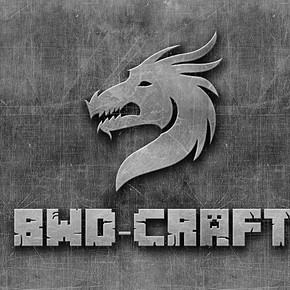 BWD-Craft server logo